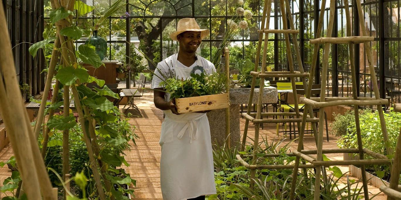 Babylonstoren Greenhouse: An Idyllic Garden - Gardenista