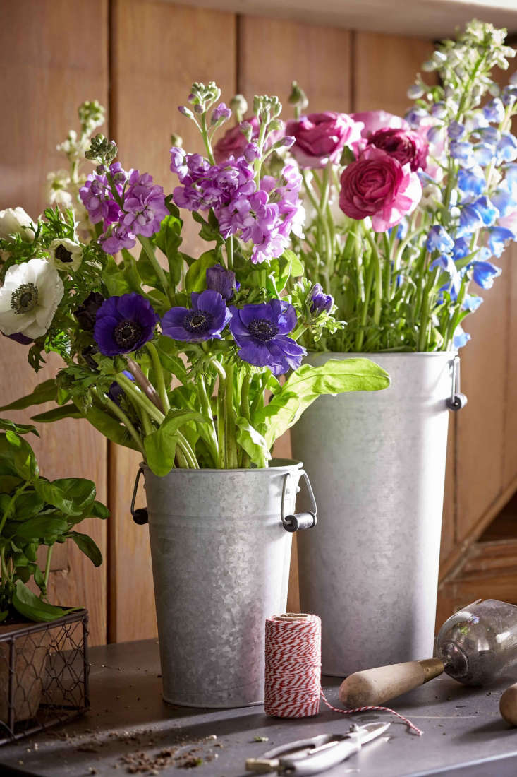 5 favorites french flower buckets gardenista for Large galvanized buckets for flowers