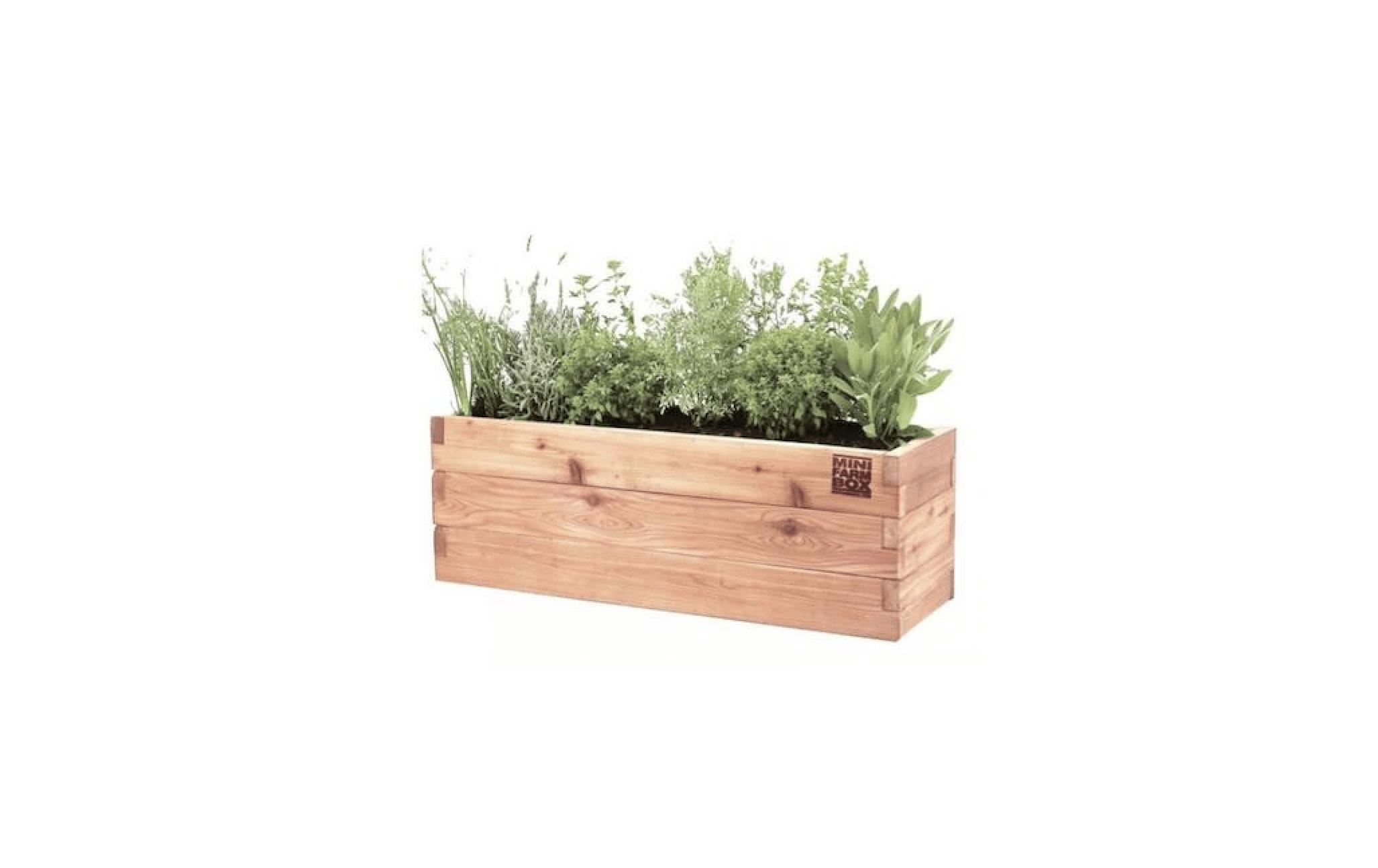 10 easy pieces: wooden window boxes - gardenista