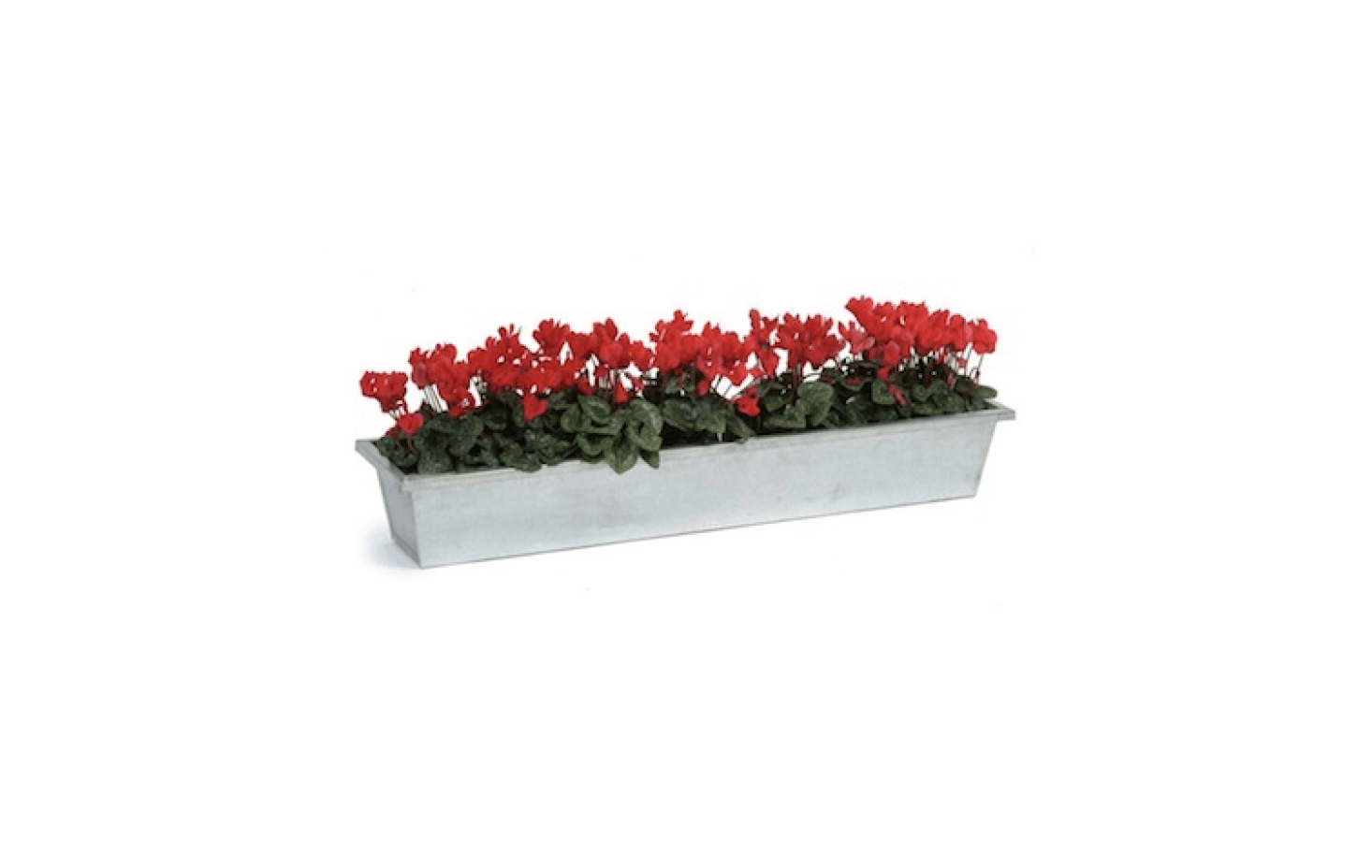 A shallow Galvanised Steel Planter Trough also is good to grow &#8