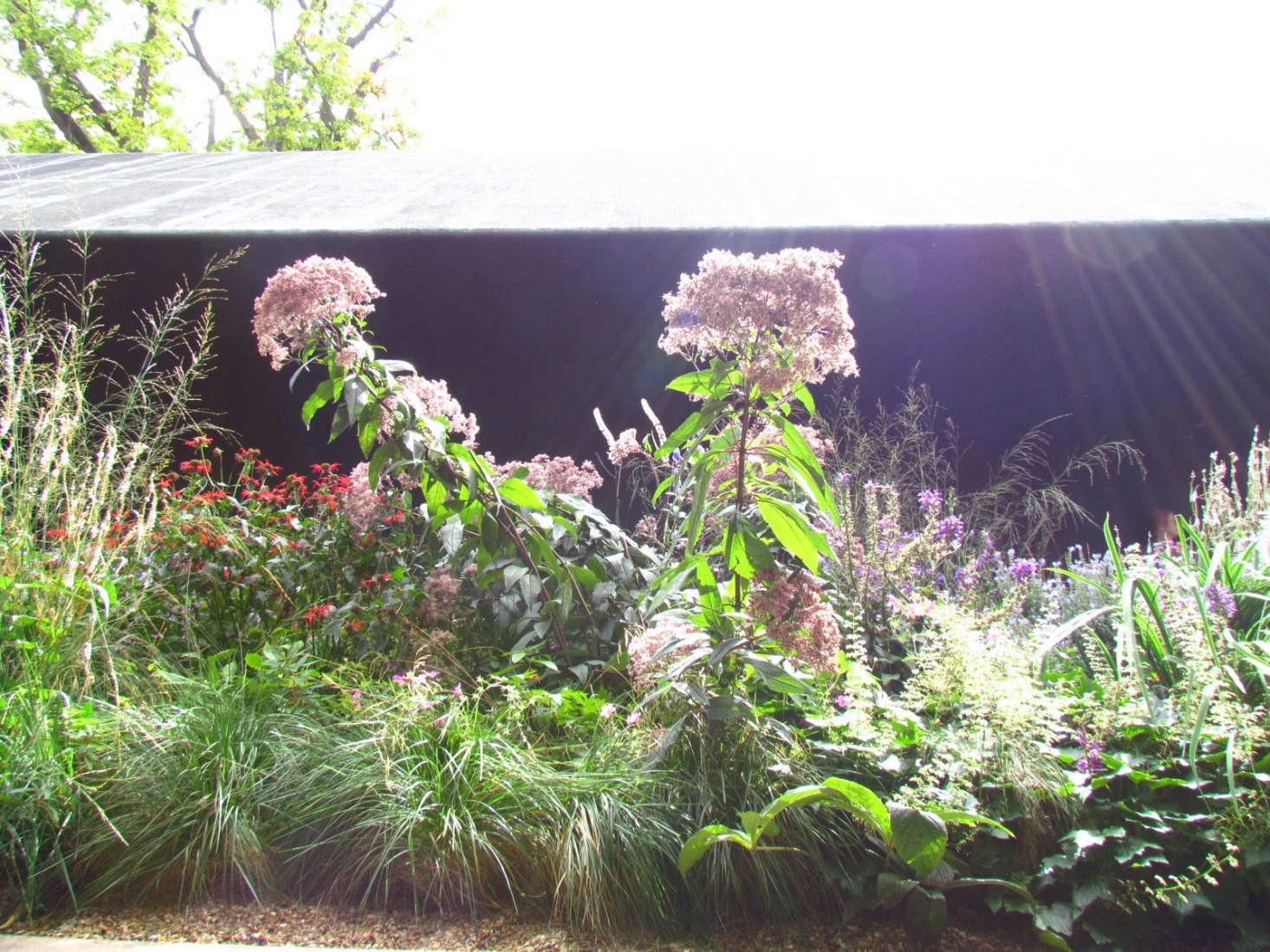 Landscape ideas 8 favorite gardens by dutch designer piet for Piet oudolf serpentine gallery