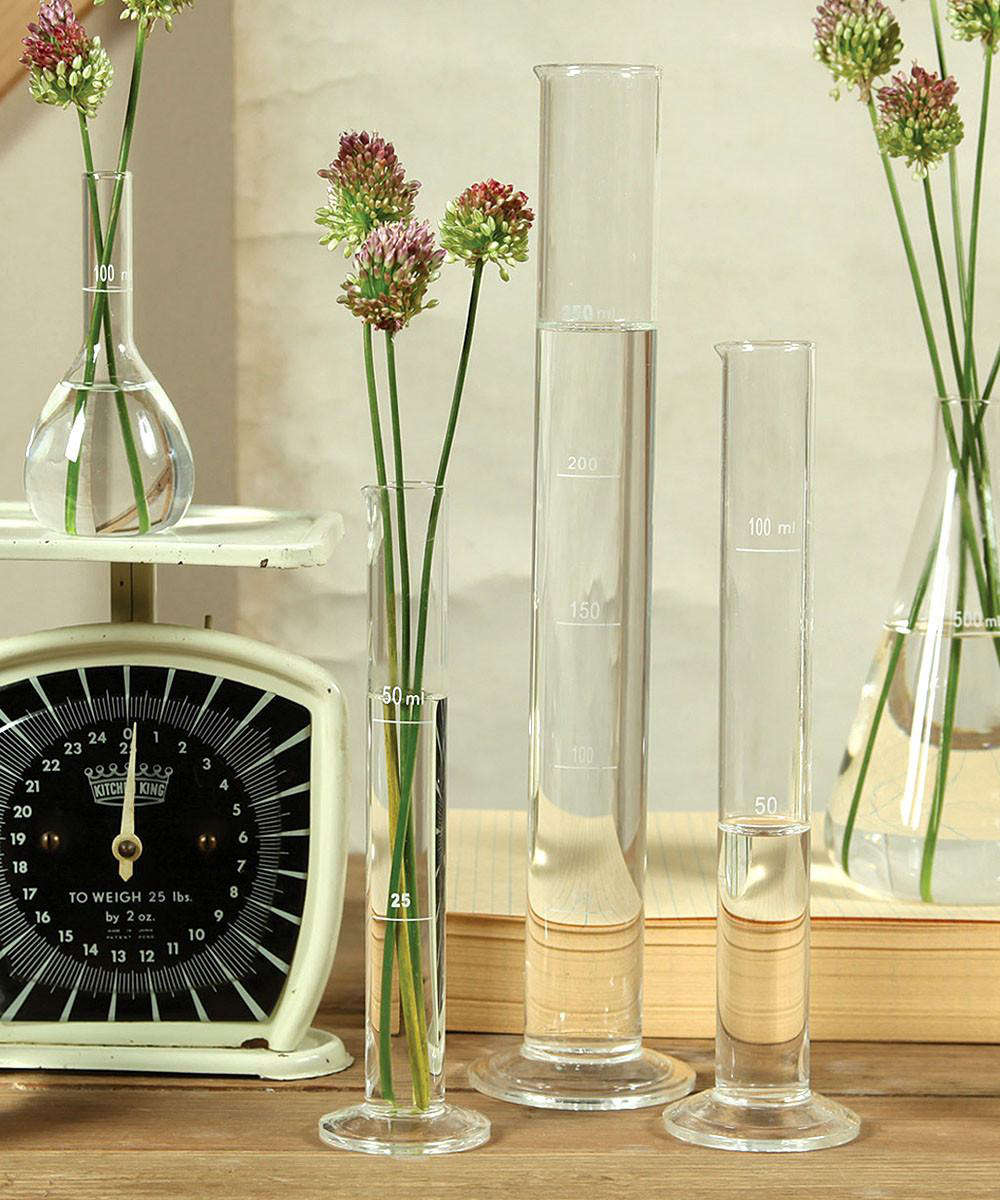 Captivating A Chemistry Glass Test Tube Vase Measures 13.5 Inches High And Is $30 From  Bliss Home Great Pictures