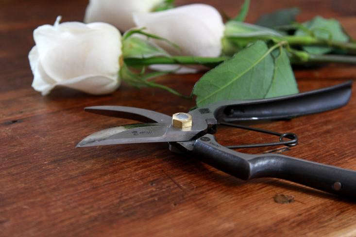 Pruner maintenance depends on which brand you own. A pair of Tobisho Handmade Pruners A-Style is $9