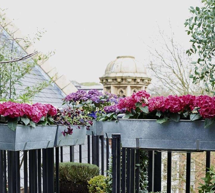 Balcony Brackets Isabelle Palmer Gardenista. Above: British Gardening  Writer Isabelle Palmer Has Zinc Window Boxes ...