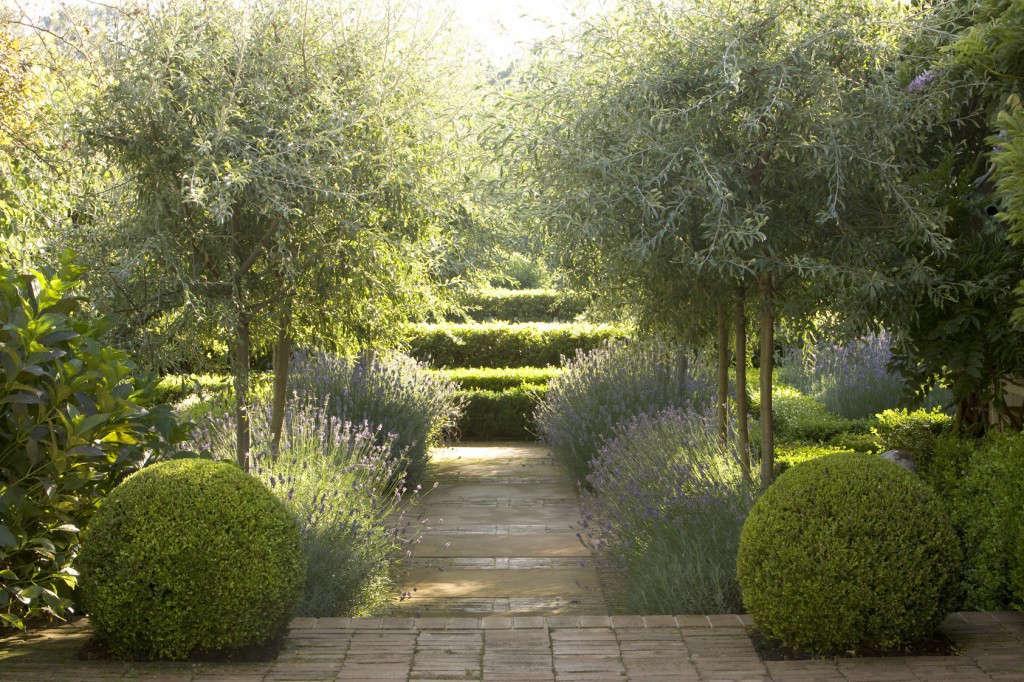 Garden Designer Visit: Lavender Fields in Australia - Gardenista