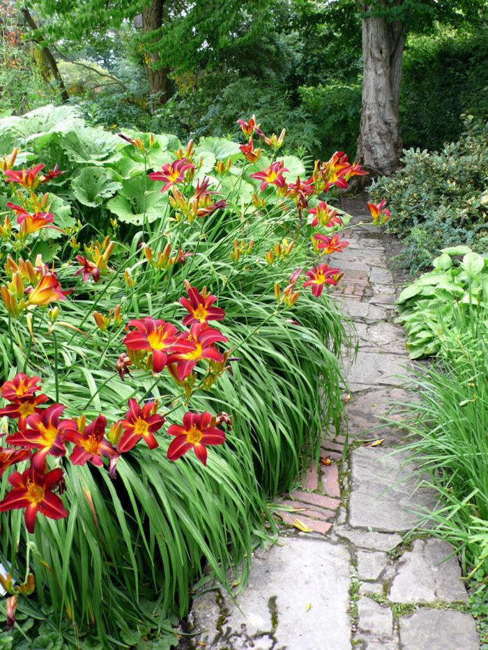 在圣金堡的花园里,在圣金堡的圣神。怎样,欢迎参观花园花园,花园