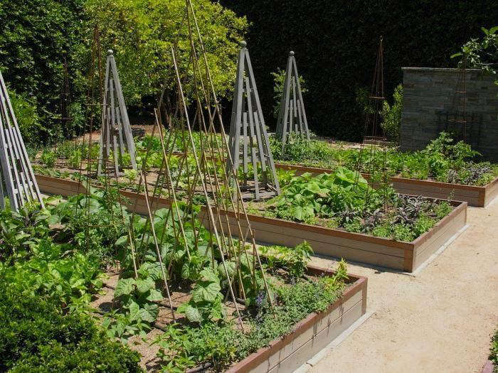 how to build a raised perenial garden