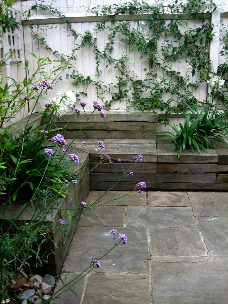 anna wardrop verbena sized - Garden Ideas London