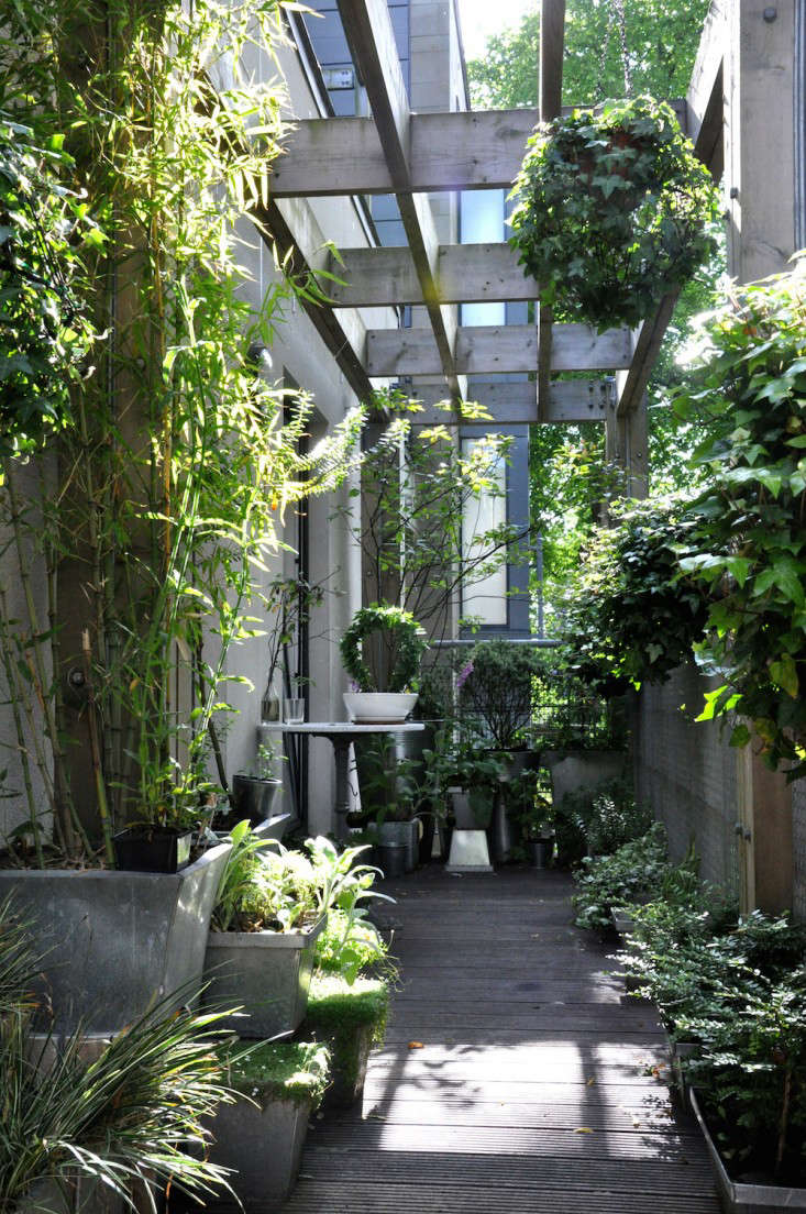 Ashley Hamiltonu0027s Design Statement: Measuring In At 1.4 By 9 Meters, My  North Facing Balcony Is Long, Skinny, And Shady. It Took Me A Few Years To  Figure ...
