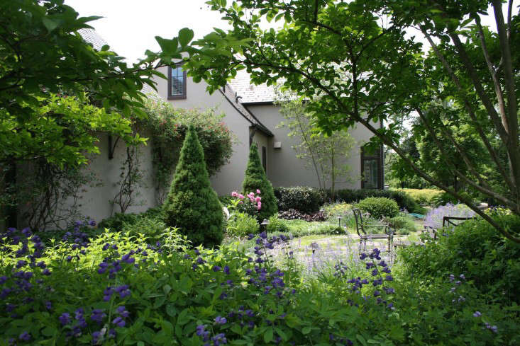 above a carex design project in potomac maryland is a perennial garden with cutting flowers that surrounds a breakfast patio the conical tree in the back - Garden Design By Carolyn Mullet