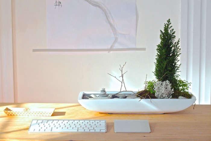 diy a desktop zen garden gardenista - Diy Zen Garden