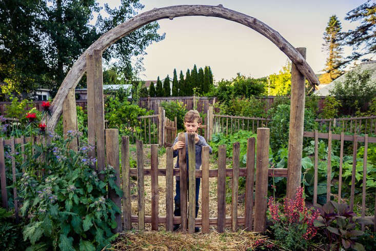 Best Edible Garden Winner: Britton Shepard - Gardenista