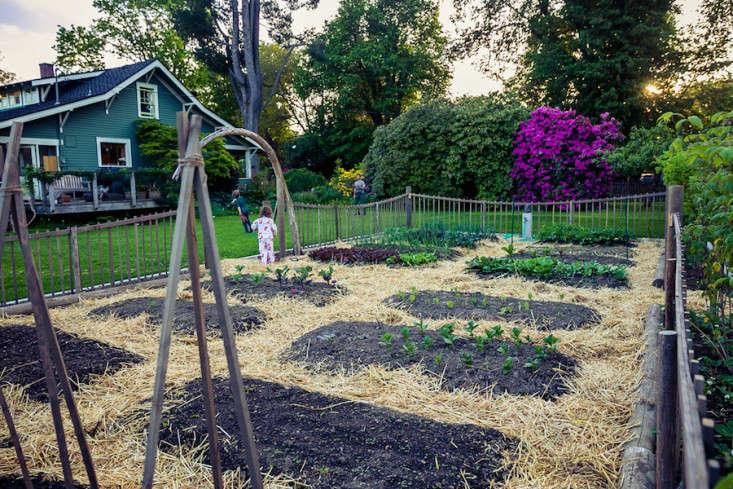 Best Edible Garden Winner: Britton Shepard - Gardenista