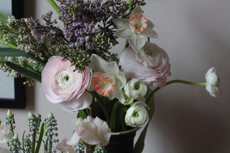 Diy How To Make A Vase Of Cut Flowers Last A Week Gardenista
