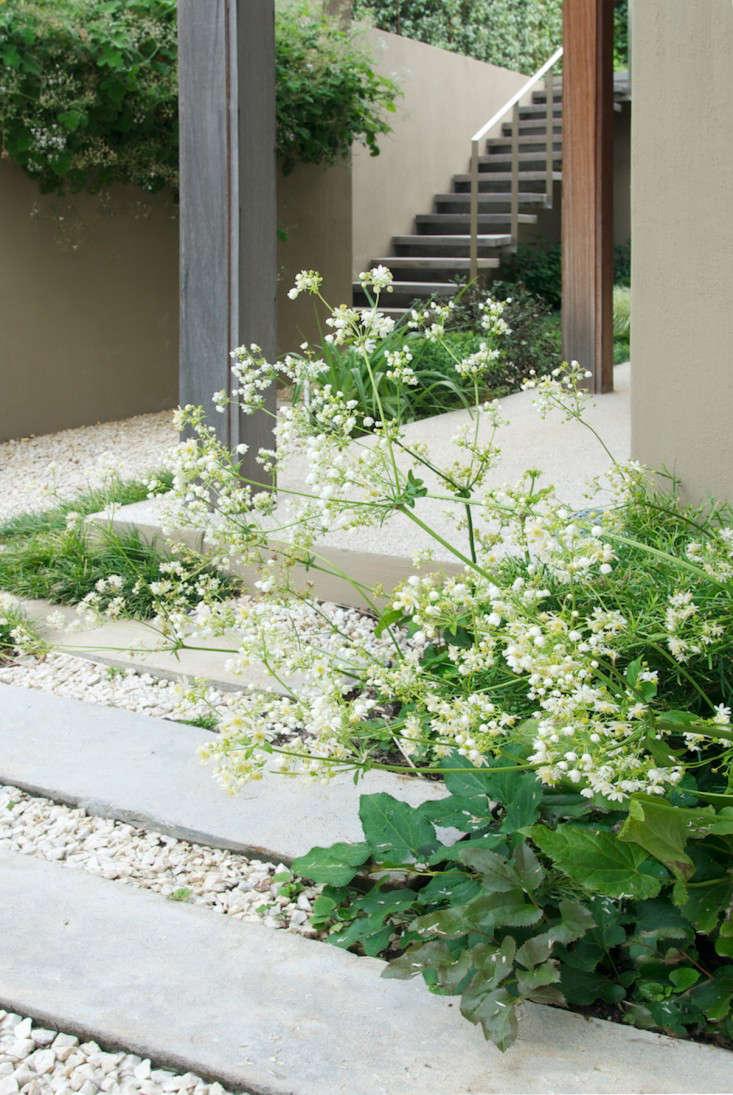 Idee Deco Palette Jardin garden designer visit: a study in greenfranchesca watson