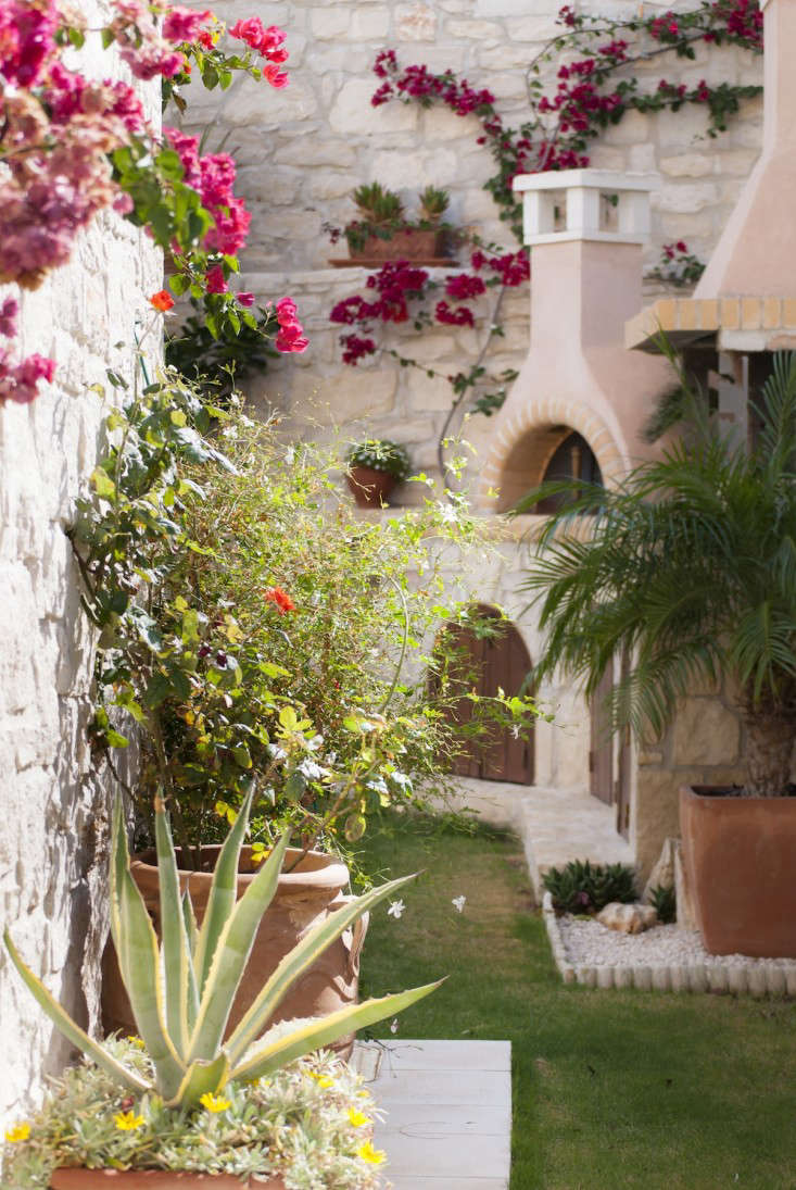 10 Garden Ideas To Steal From Greece Gardenista