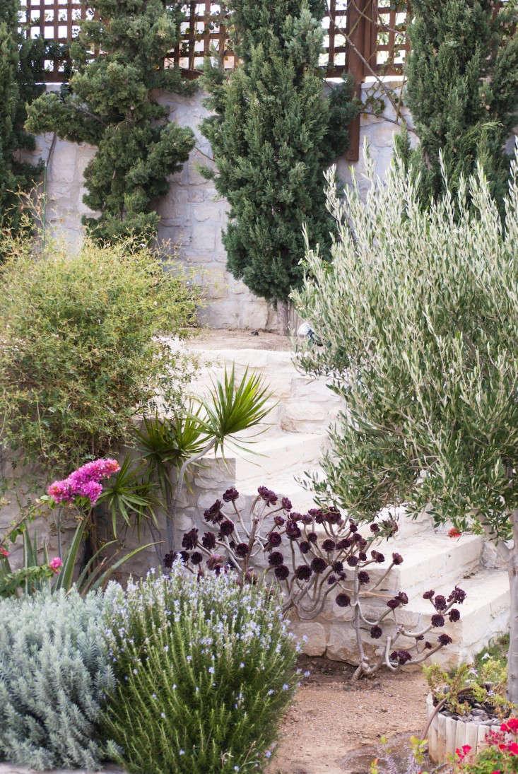 Greek garden Crete Eleni Psyllaki 21 gardenista 10 Garden Ideas to Steal from