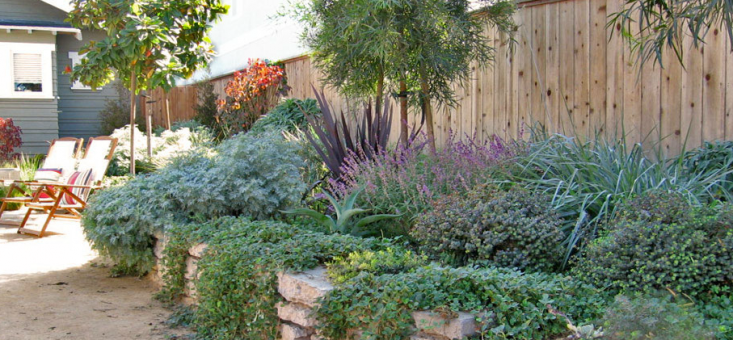 ... Outdoor Design Used Chunks Of The Old Concrete Driveway To Build A  Retaining Wall For A Garden Filled With Mediterranean And California Native  Plants.