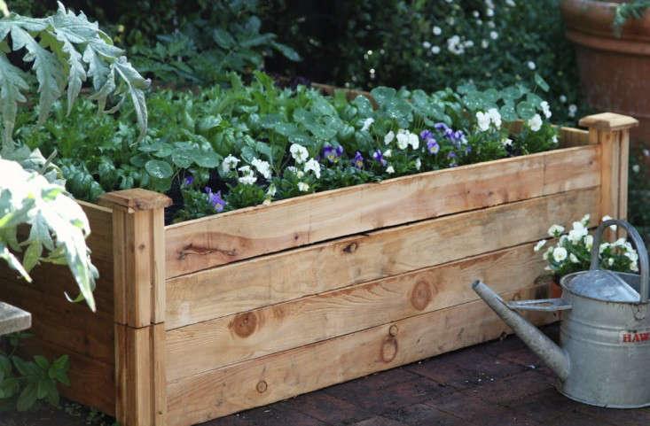 An Almost Instant Vegetable Garden No Tools Required Gardenista