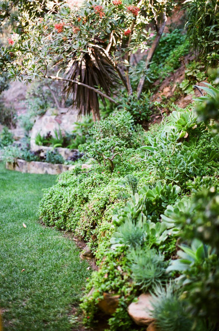 Garden Visit At Home With Jeweler Kathleen Whitaker In La