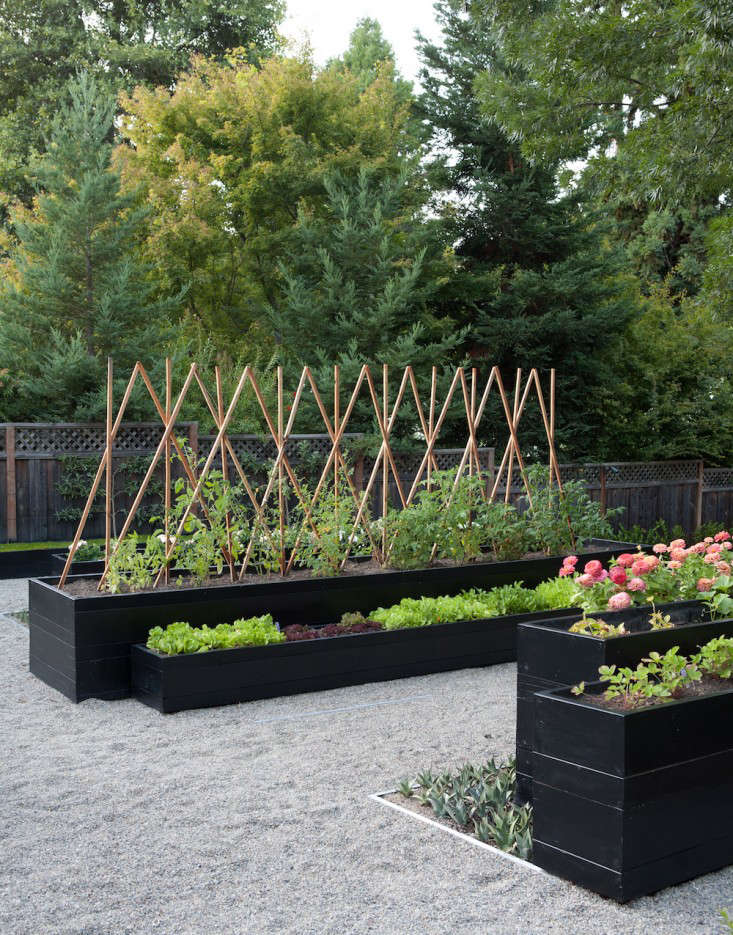 The New Vegetable Garden 8 Favorite Edible Backyards