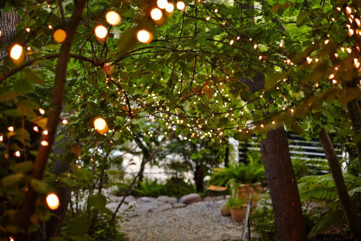Garden String Lights Enchanting Garden Visit Starry Nights And String Lights In Northern California