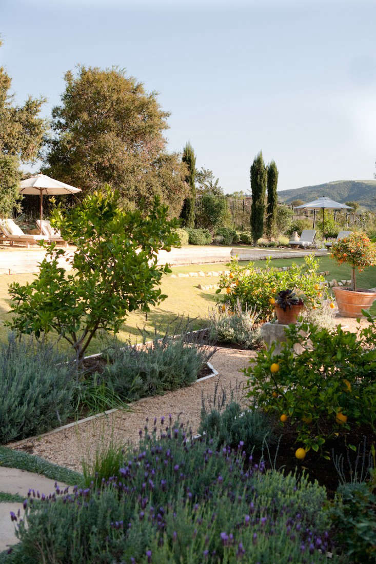 Above: This Southern California Garden By Molly Wood Garden Design Mixes  Edibles And Perennial Flowers For A Kitchen Garden Thatu0027s Suited For  Lingering.
