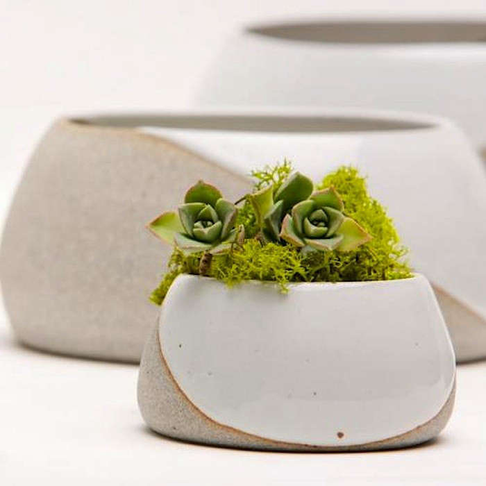 Great Pots And Planters Iced With A White Glaze