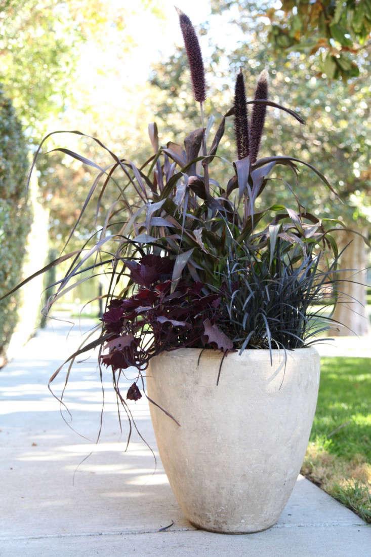 Diy Patio Planter Dark And Stormy Shades Gardenista