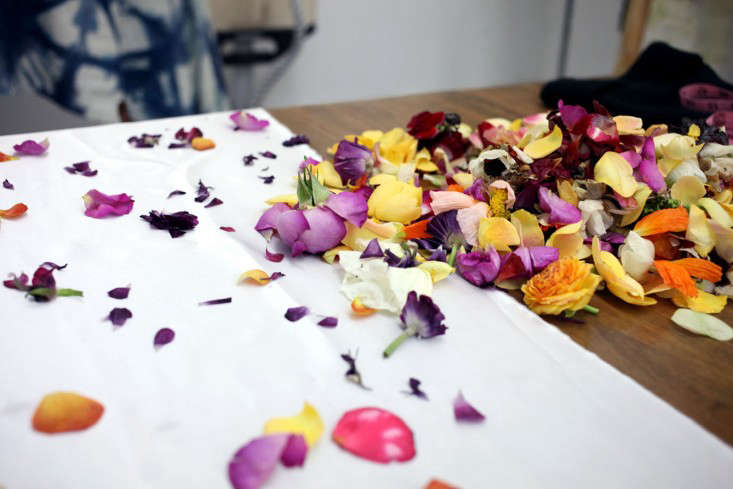 Shoppers diary natural flower dyes and silk scarves from cara above flowers cara will use for a bundle dye mightylinksfo