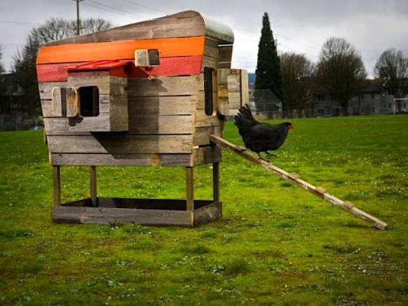 Superb Modern Chicken Coop Design