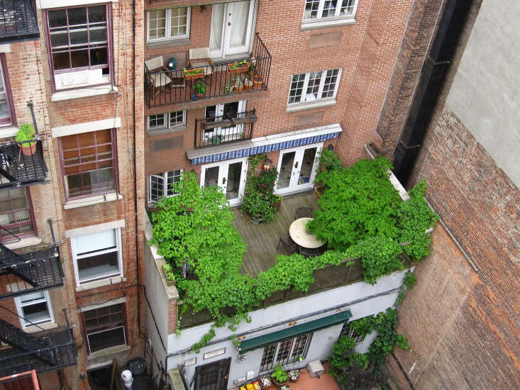 Apartment Therapy: 11 Garden Ideas to Steal from New York City ...