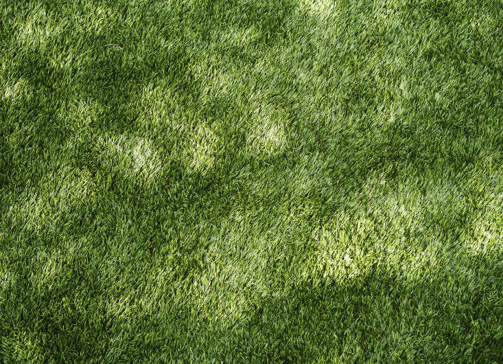 fake grass texture. Photograph By Matthew Williams For Gardenista. Fake Grass Texture