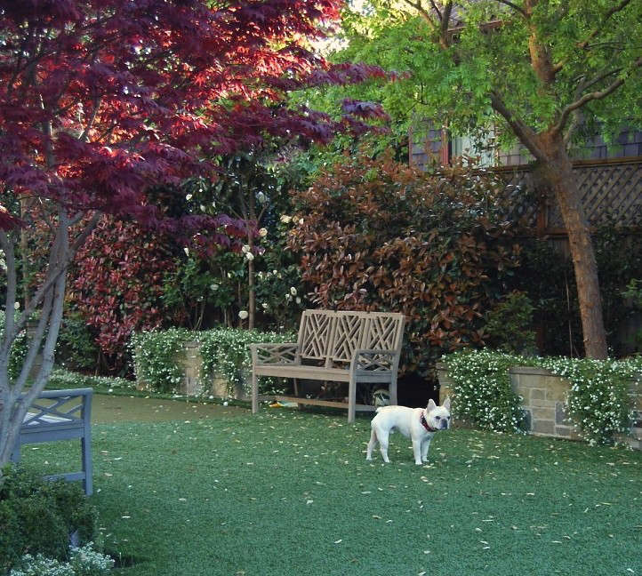 What Are The Best Places To Install Artificial Grass?