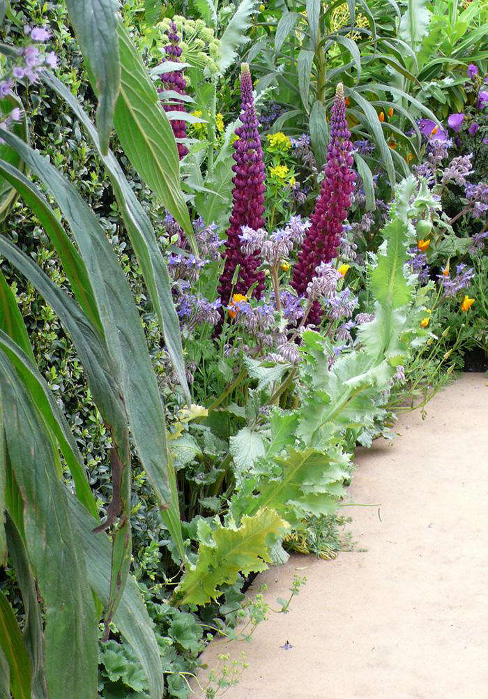 Gold medals awarded at the chelsea flower show gardenista - Chelsea flower show gold medals ...