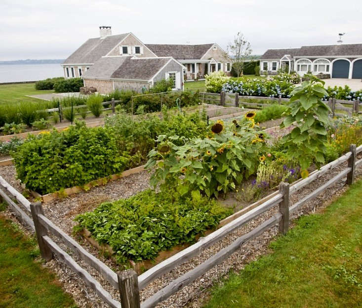 Seaside Gardening: 10 Ideas for Serene Coastal Landscapes - Gardenista