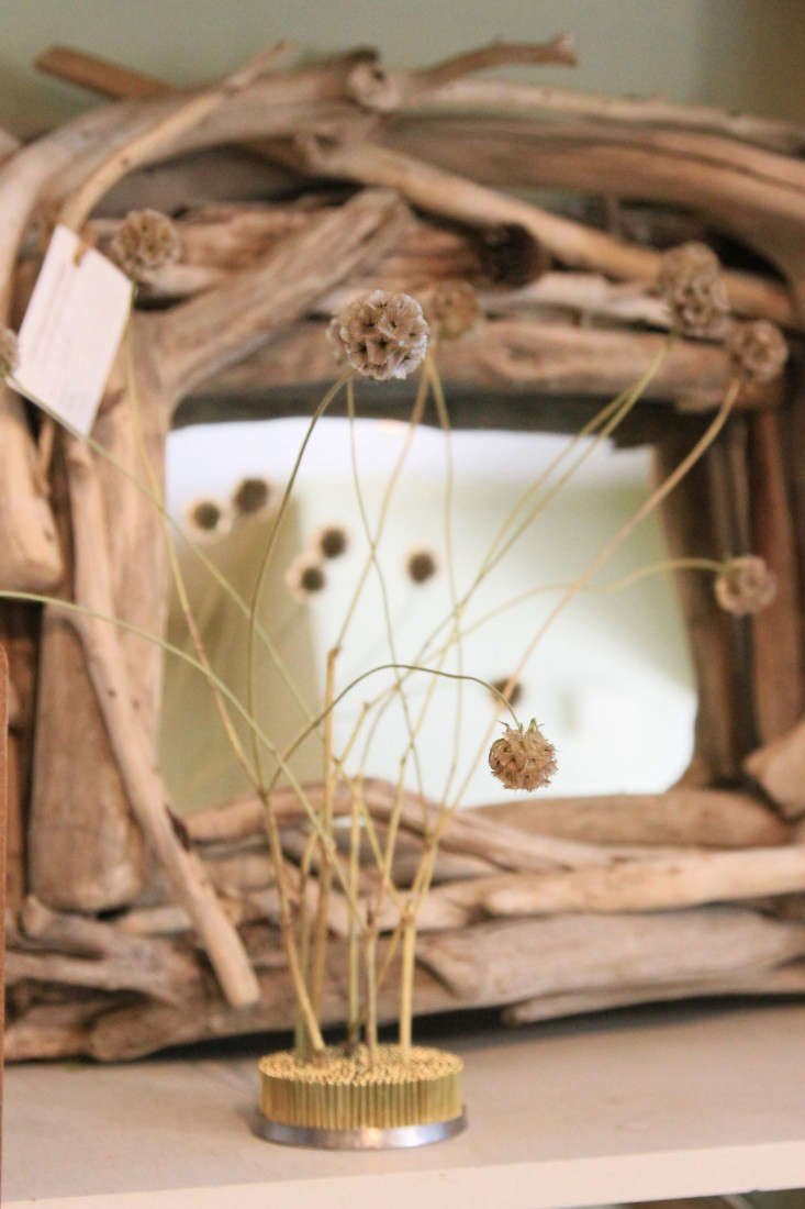 Sculptural scabiosa pods makes a statement in a flower frog; no vase or water needed.