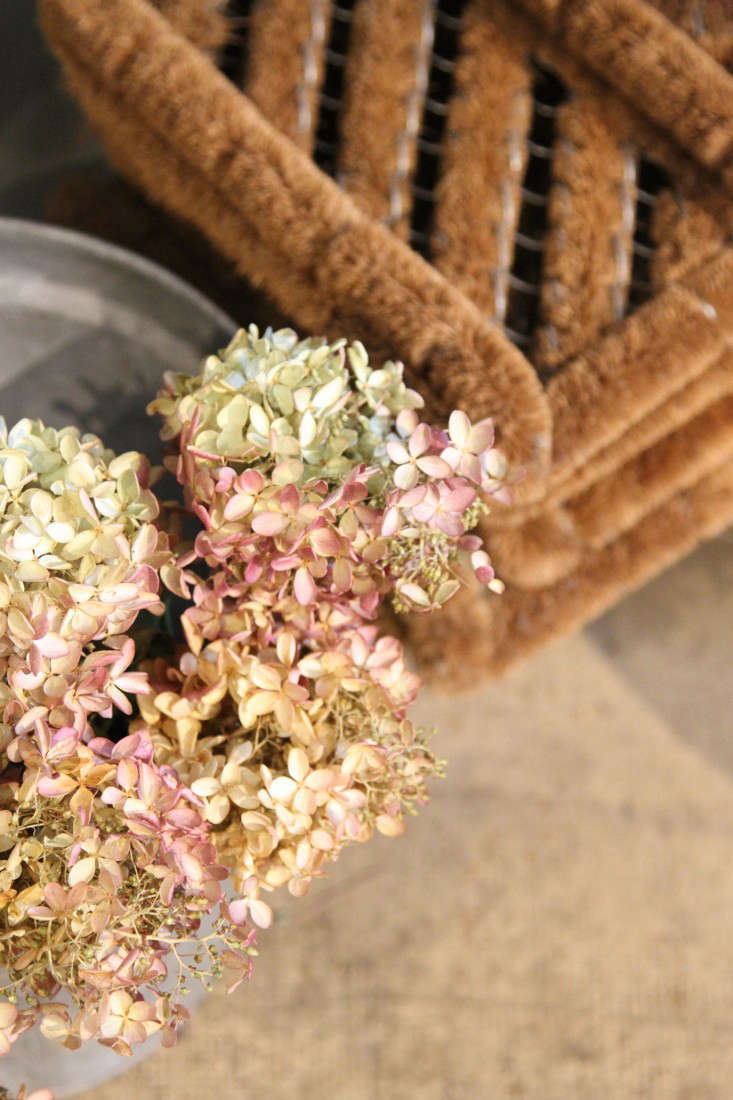 Pink-tipped hydrangea bunches fill a bucket on the floor.