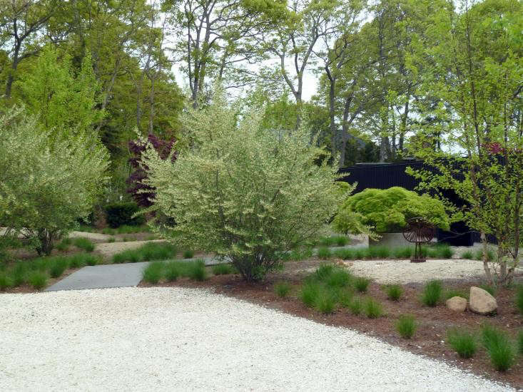 Hardscaping 101 Seashell Paths And Driveways Gardenista