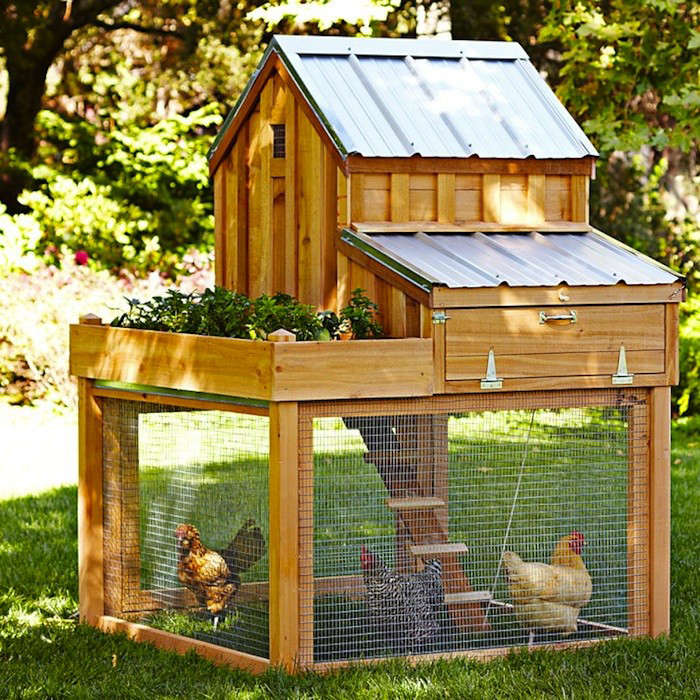 Backyard Chicken Coup 5 favorites: backyard chicken coops for small flocks - gardenista