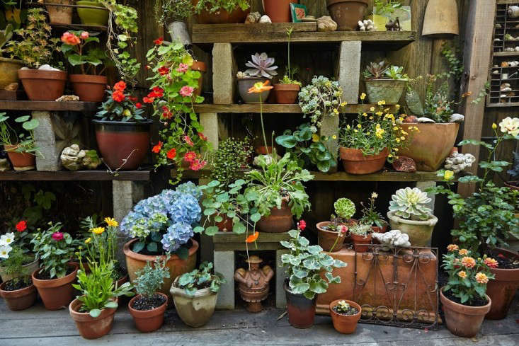 10 Genius Garden Hacks With Concrete Gardenista