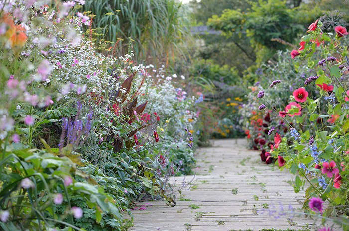 10 Ideas To Steal From English Cottage Gardens Gardenista,Back Side Boat Neck Blouse Designs Images