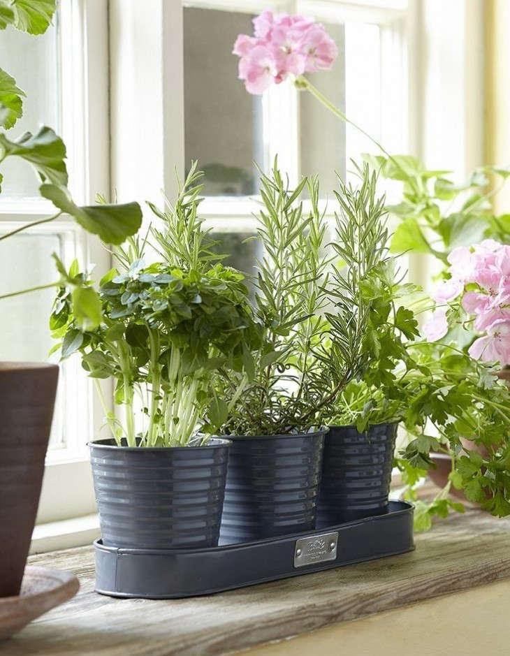 20 Under 20 Best Summer Garden Tools And Accessories Gardenista