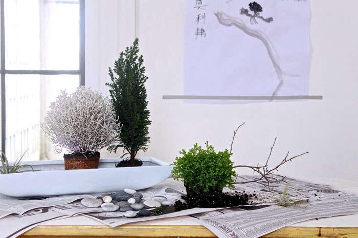 Great DIY: A Desktop Zen Garden