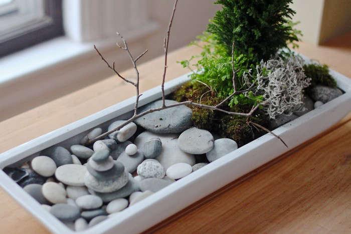 diy: a desktop zen garden - gardenista, Garten und Bauten