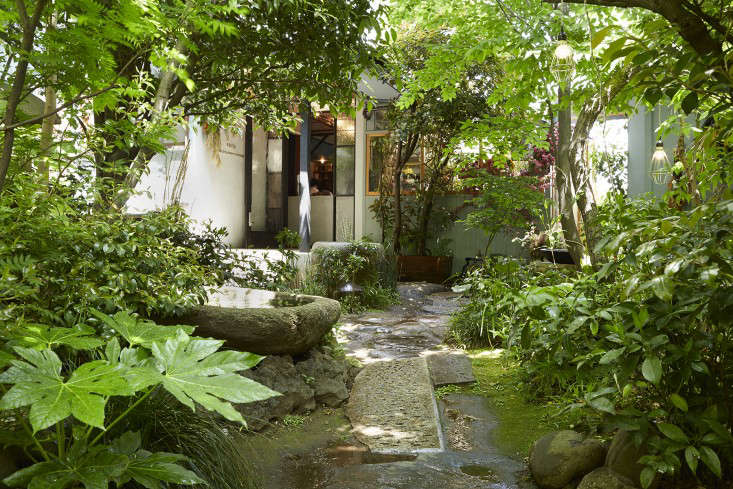 你是埃米特·巴斯。在花园里,花几个小花园来参观这个小南瓜。