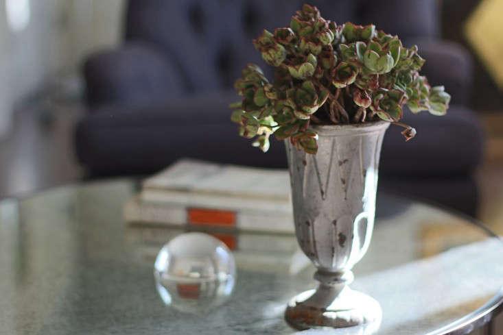 Diy Bouquet Needs No Water Lasts A Month Gardenista