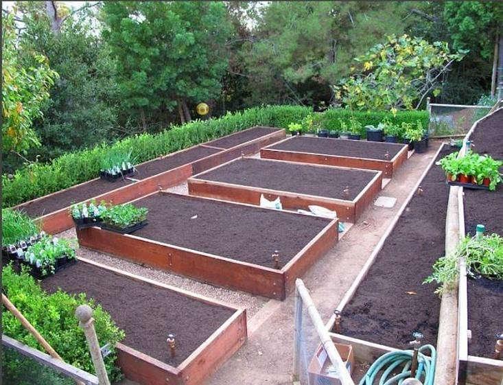 Delicieux Edible Garden Bed Layout Design Gardenista