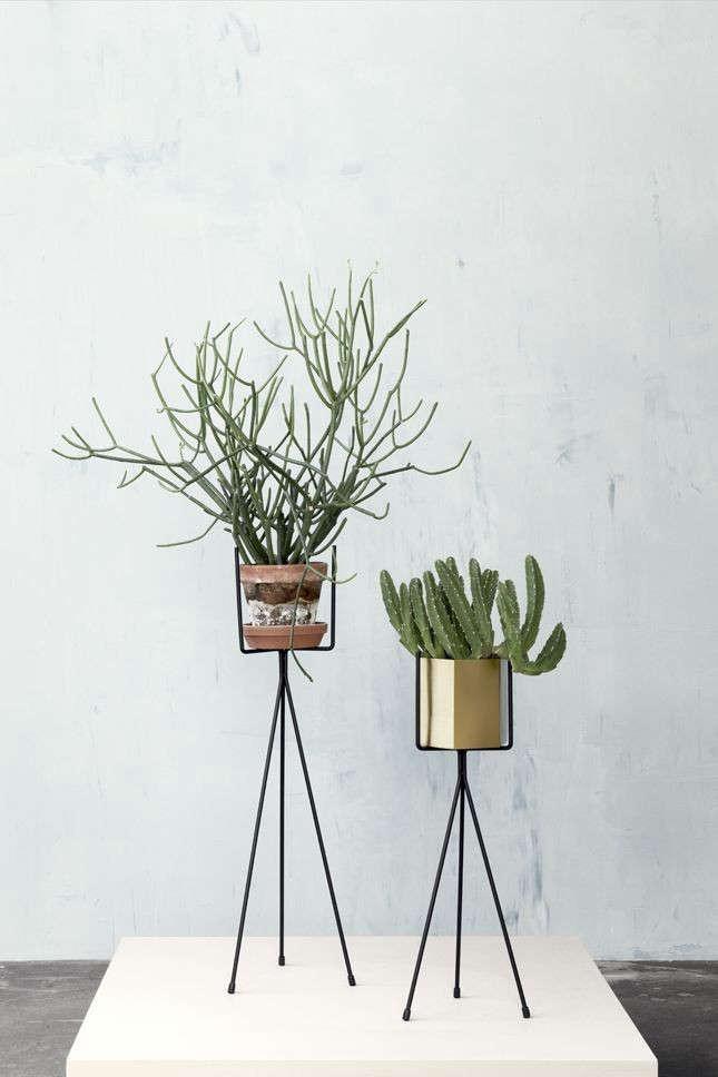 10 Easy Pieces Metal Plant Stands Gardenista