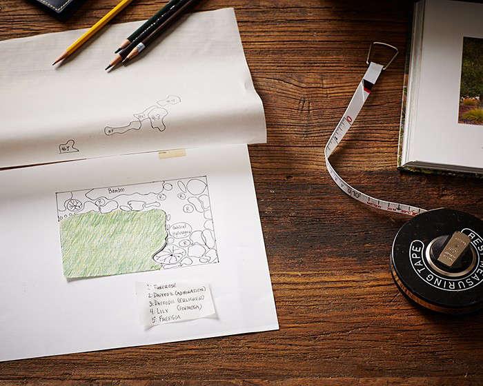 gardening 101 how to draw a garden plan gardenista